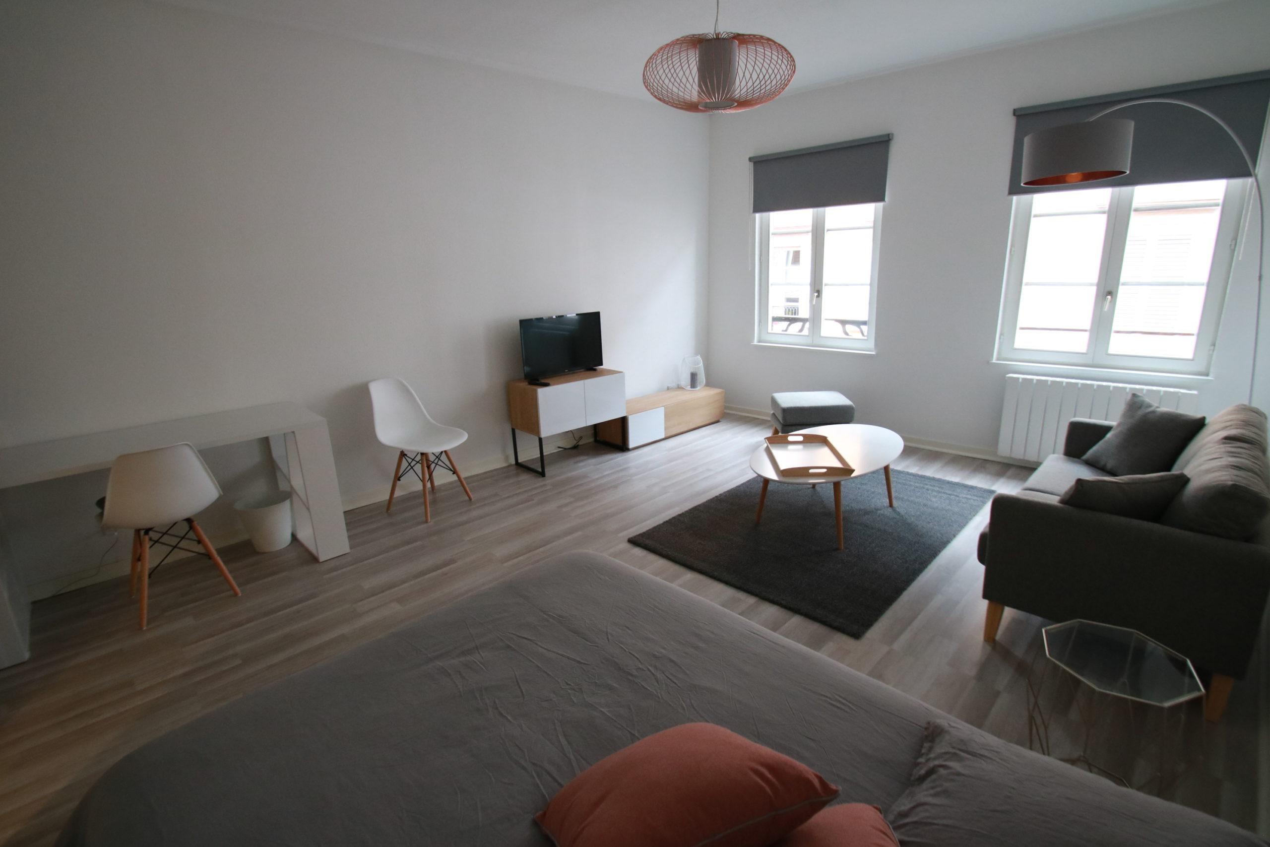 Magnifique 1 pièce 35.2m² meublé en hyper centre de Strasbourg